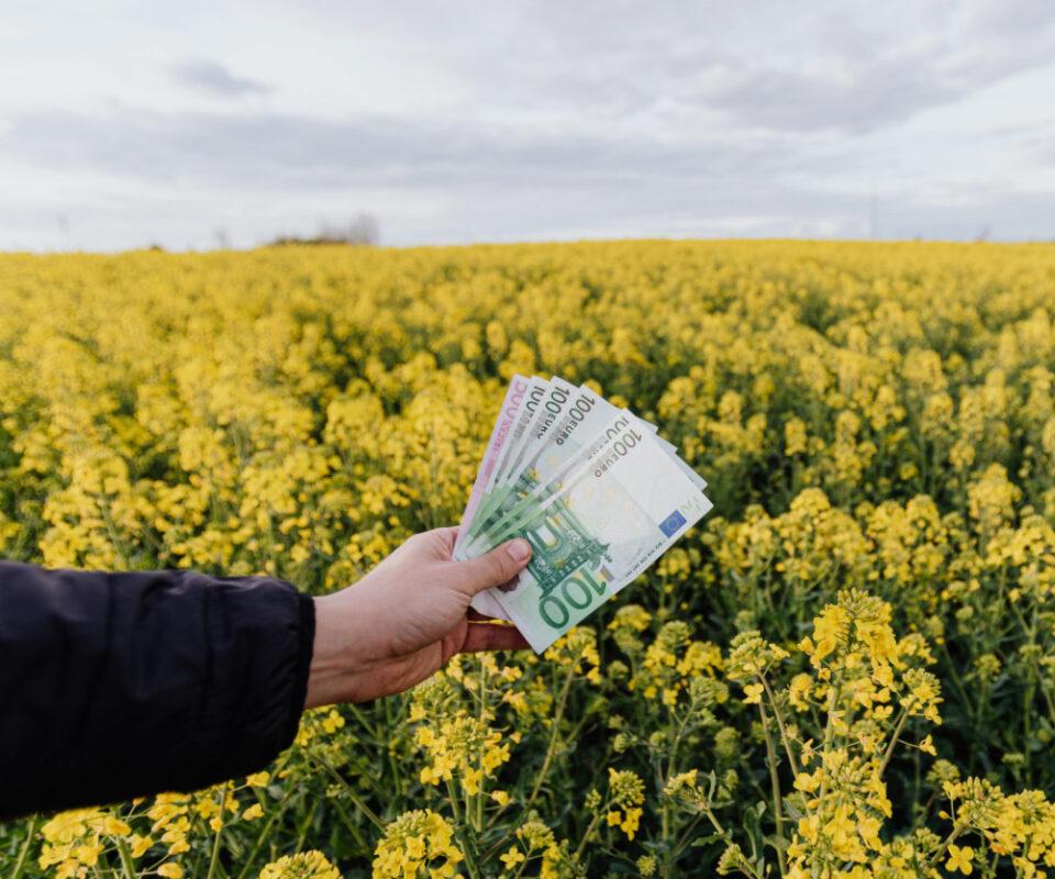 Soglia dei contanti a 2.000 euro dal primo luglio 2020.