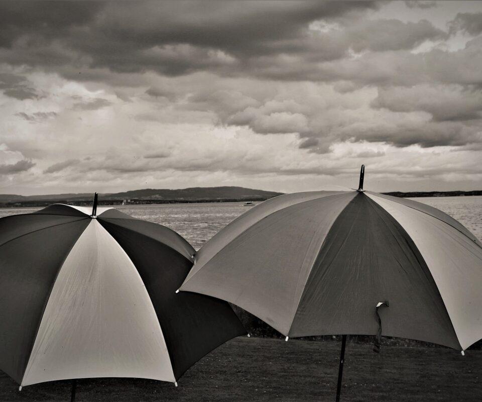 Pioggia di cartelle in arrivo!